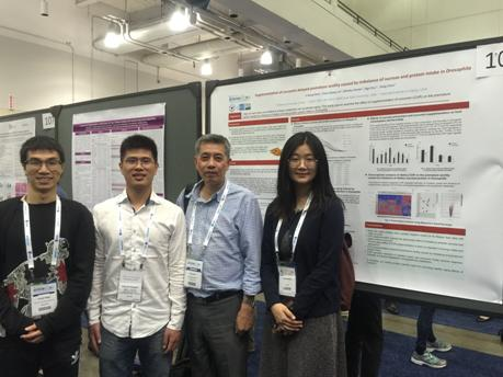 Professor Shen Lirong Attended the 2018 Annual Meeting of the American Society for Nutrition